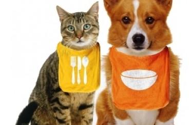 Alimentacion para mascotas